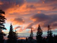 Red Clouds Behind Trees in Desolation Wilderness S