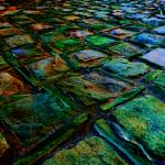 """Square Stones Pathway"" by Saturato"