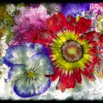 """33a Abstract Floral Painting Digital Expressionism"" by Ricardos"