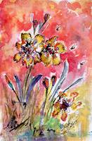 Fancy Irises Floral Watercolor