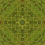 """""""Stroxymity Freshly-Mown Mandala"""" by richardhjones"""