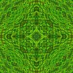 """Stroxymity Moss-Evening Mandala"" by richardhjones"