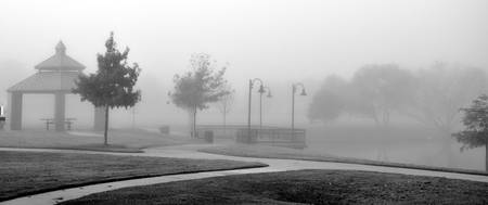 Kimzey Park Fog panoramic #4