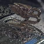 """Bentley Mulsanne after rain 2"" by janesprints"