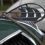 """1936 Plymouth Medium Green"" by janesprints"