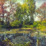 """Monets Afternoon"" by JohnRivera"