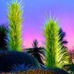 """Desert Study 22B"" by robertmeyerslussier"