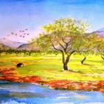"""Olive grove"" by valzart"