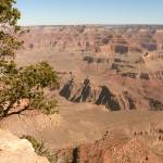 """South Rim Grand Canyon P1160699"" by rayjacque"