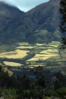 Fields in a Valley