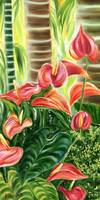 Tropical Coral Anthurium Flowers by Jenny Floravit