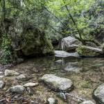 """martinet-creek-aiguafreda-catalonia"" by mgarrido"