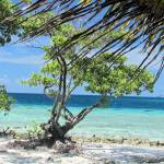"""""""Caribbean Sea"""" by TNorth"""
