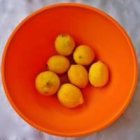 Lemons in Orange