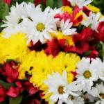 """""""Red White Yellow Bouquet"""" by SplitWindow"""