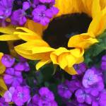 """Sunflower and Purple"" by SplitWindow"