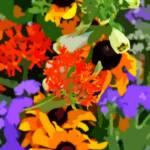 """Untidied Summer Garden"" by SplitWindow"