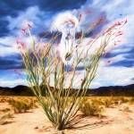 """Peyote Vision in the Desert"" by johncorney"