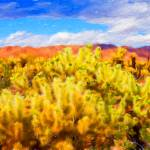 """Cholla Cactus Garden"" by johncorney"