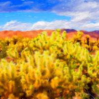 Cholla Cactus Garden Art Prints & Posters by John Corney