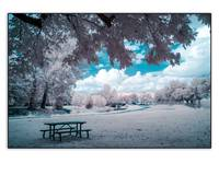 table ir blue field