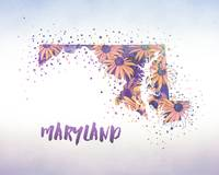 DoubleExposure_States_Maryland