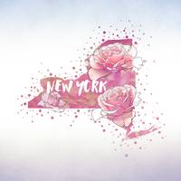 New York State Flower: Rose