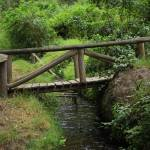 """Bridge Over a Stream"" by rhamm"