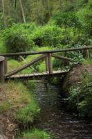 Bridge Over a Stream
