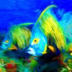 """fish 2"" by ArtbySachse"