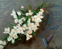 White Flowers and Chalk