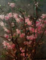 Pink Buds and Blossoms