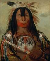 George Catlin, Buffalo Bull's Back Fat, Head Chief