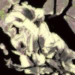 """""""16 01059 x x artomatic"""" by crescenti"""