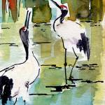 """Japanese Cranes In Lily Pads"" by GinetteCallaway"