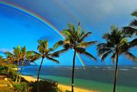 Rainbows-in-Paradise