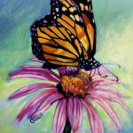 """""""Butterfly Royalty"""" by ACastelli"""