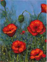 Red Poppies, Flowers