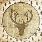 """Vintage deer"" by lizmix"