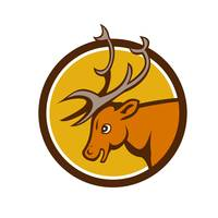 Stag Deer Buck Head Circle Cartoon