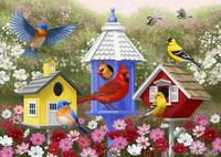 Primary Colors - Birds and Birdhouses