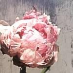 """ORL-7981-2 Elegant Pink Flower"" by Aneri"