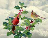 Cardinals on Tree Top