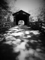 black and white covered bridge