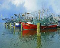 Shrimp Boats in Biloxi Harbor