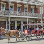 """New Orleans Horse Carriage"" by awsheffield"