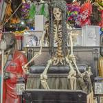 """New Orleans Skeleton"" by awsheffield"