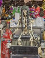 New Orleans Skeleton