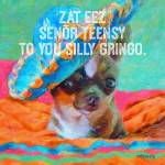 """Chihuahua Senor Teensy"" by RebeccaKorpita"
