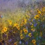 """yard flower impressions"" by rchristophervest"